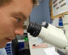 Il MIUR sblocca i finanziamenti: buone notizie per la ricerca italiana?