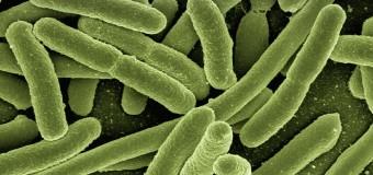 Antibiotico-resistenze, Italia maglia nera in Europa
