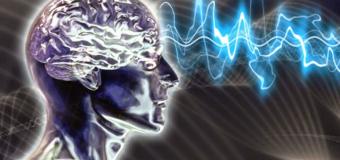 Stefano Pigolotti e l'illusione della conoscenza