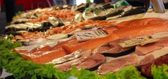 OK il pesce è giusto: guida pratica all'acquisto consapevole del pesce