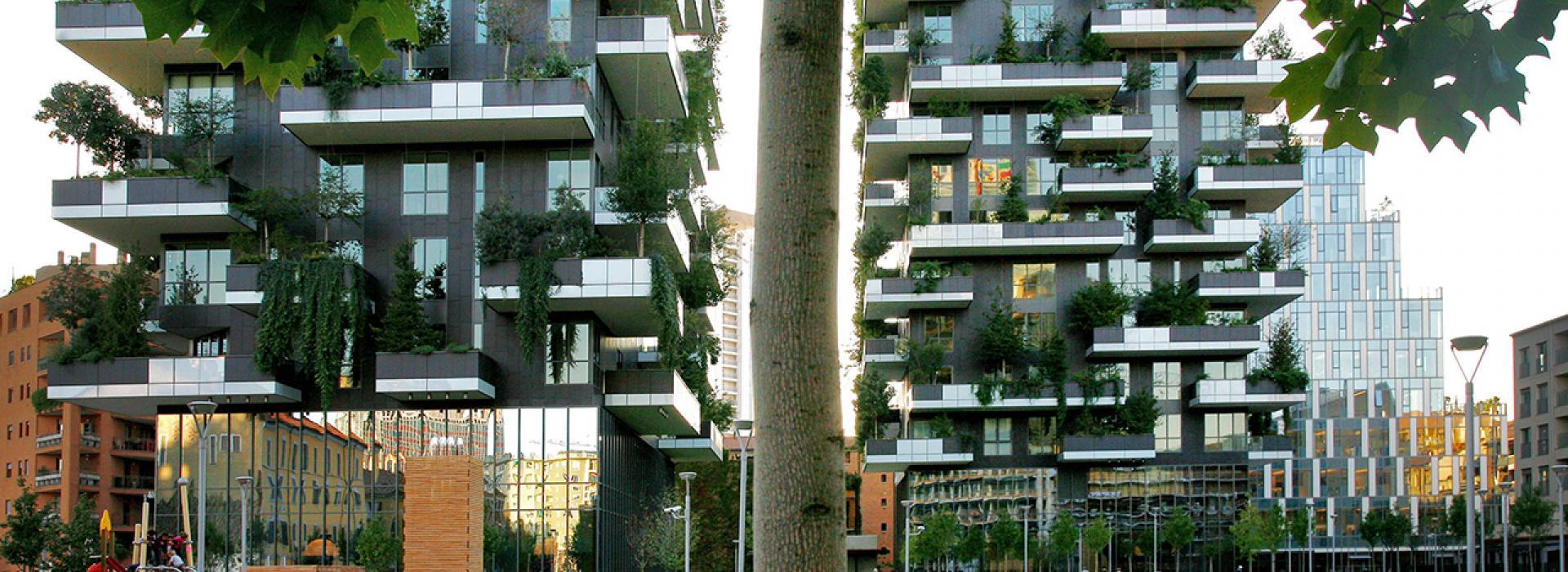 Una occasione per trasformare il tuo giardino in un oasi green
