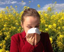 È online Stop Allergia:nuova rivista dedicata alle allergie, e non solo